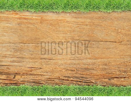 Green grass on old wood background