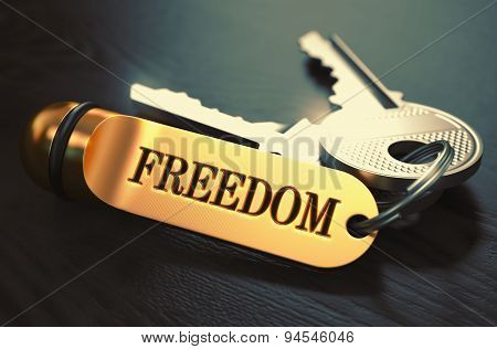 Keys to Freedom. Concept on Golden Keychain.