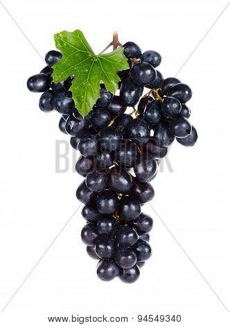 Fresh Grape Isolated On The White Back Ground