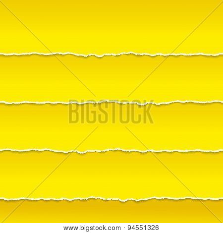 Strips of orange paper ragged edge. Vector