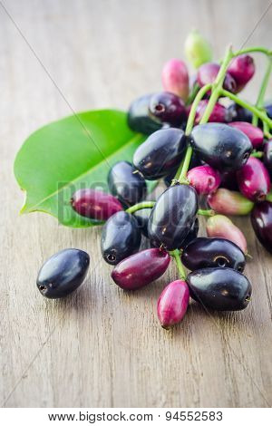 Jambolan Plum, Java Plum (syzygium Cumini) On White Background.