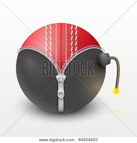 Cricket leather ball inside a burning bomb vector