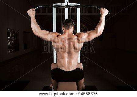 Muscular Bodybuilder Training Back