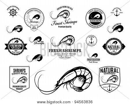 Shrimps Labels And Design Elements