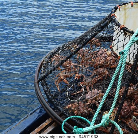 Heavy Steel Alaskan Crab Trap