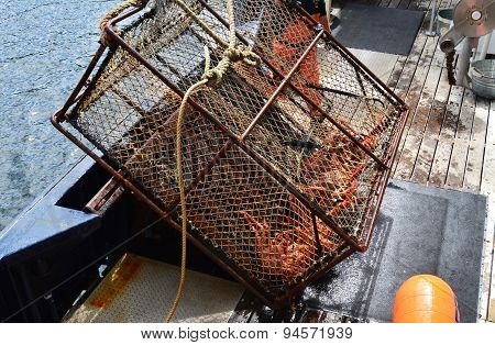 600 Pound Steel King Crab Pot