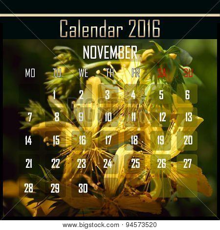 Floral 2016 Calendar Design For November