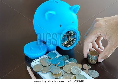 Collect Money From Saving In Piggy Bank