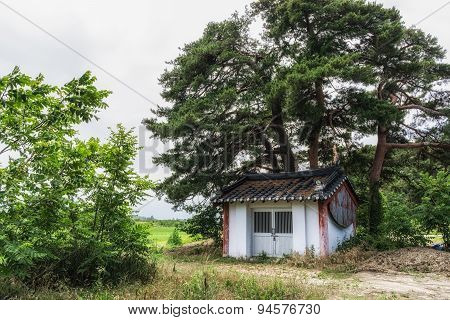 Small Farm Storage Under Pine Tree Forest