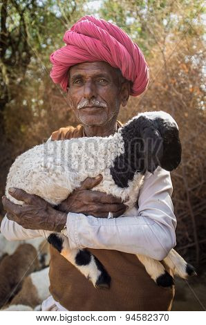 GODWAR REGION, INDIA - 13 FEBRUARY 2015: Elderly Rabari tribesman holds lamb in outdoor stable. Rabari or Rewari are an Indian community in the state of Gujarat.