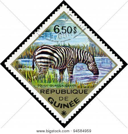 Vintage  Postage Stamp. Zebra To Africa.