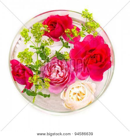 Lady`s mantle and roses in a bowl with water for decoration