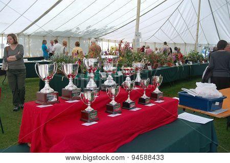 Flower Show Trophies
