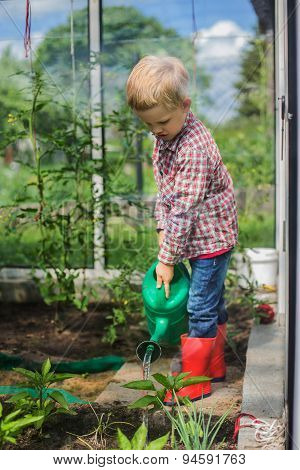 Cute little boy watering vegetables with watering can. Garden. Greenhouse. Outdoors portrait