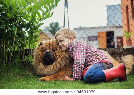 Child lovingly embraces his pet dog. Chow Chow. Outdoor portrait