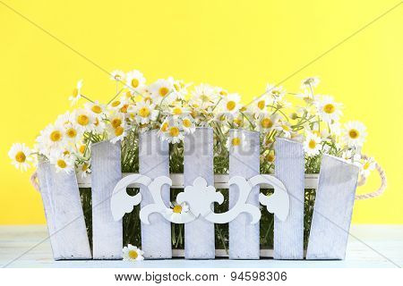 Beautiful bouquet of daisies in ornamental flowerpot on yellow background