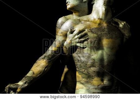 Woman Hugging  Man With Bark Texture