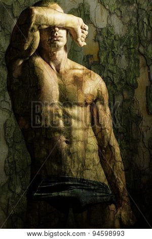 Handsome Shirtless Man With Bark Texture