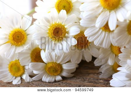 Beautiful bouquet of daisies close up
