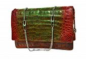 stock photo of crocodiles  - Crocodile genuine leather handbag  - JPG