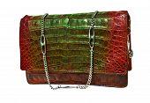 pic of crocodile  - Crocodile genuine leather handbag  - JPG