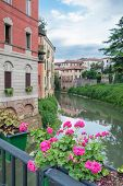 pic of vicenza  - Flowered vases on the iron railing of saint Paul bridge in Vicenza and a view of Retrone river and houses at its banks - JPG