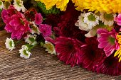 picture of mums  - Bunch of fresh mum flowers on wooden table - JPG
