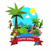 stock photo of colibri  - Exotic birds concept with tropical island nature flat vector illustration - JPG