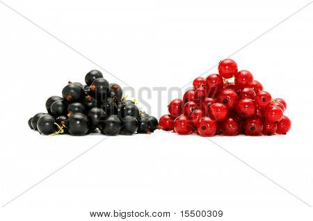 red currant and  blackcurrant isolated on a white background