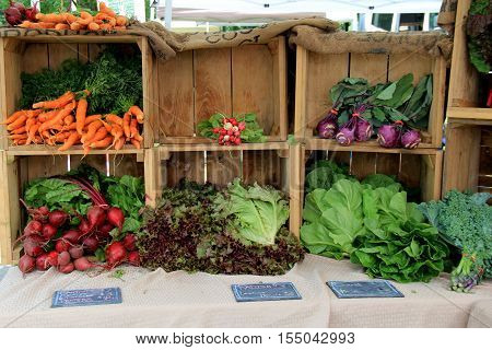 Image of fresh vegetables just picked from the garden, on display at local farmers market