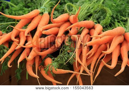 Bunches of fresh picked carrots on table at local market.