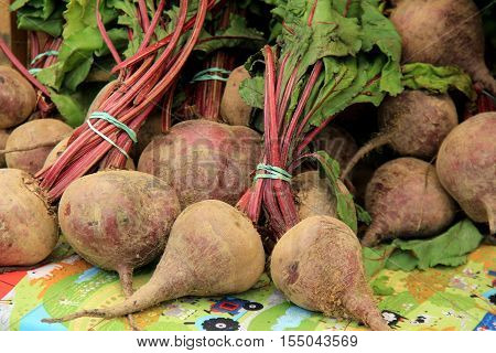 Bunches of large beets, set on table at local farmers market.