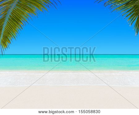Tropical white sandy palm beach and turquoise clear ocean water - summer vacation background with blue sunny sky