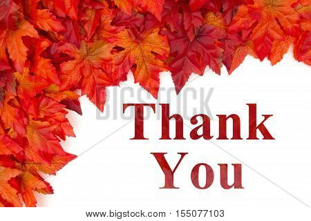 Thank You message Some fall leaves with text Thank You