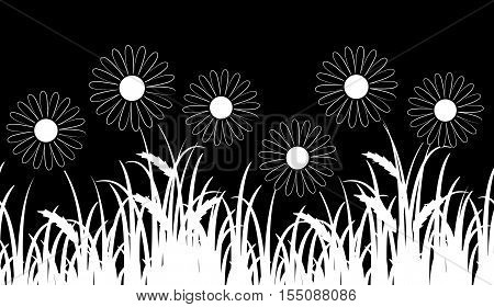 vector seamless border with daisies in grass isolated on black background