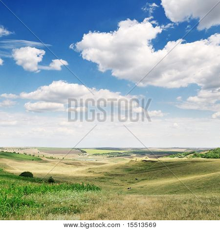 white beautiful clouds and spring field