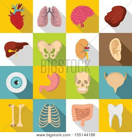 Human organs icons set. Flat illustration of 16 human organs vector icons for web