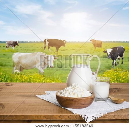 Milk jug and curd cheese bowl over sunny cows meadow