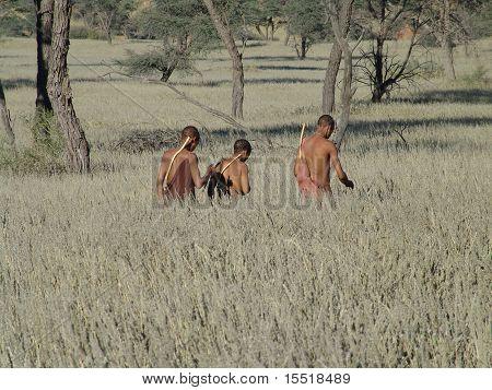 Bushmen Hunters In A Fields Search