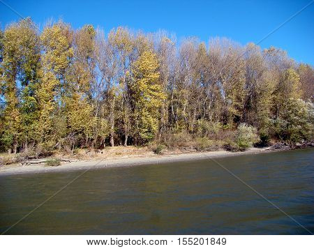 Cold autumn Danube islands and channels. It sees the banks of the Danube, islands, floodplain forests, shrubs, grasses, blue sky
