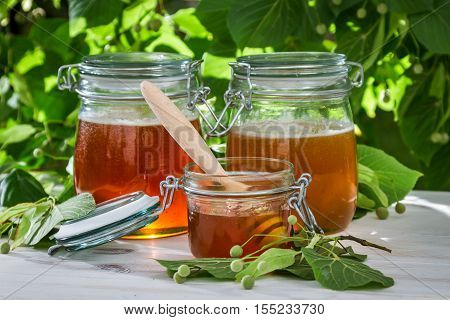 Honey In A Jar And Linden Trees
