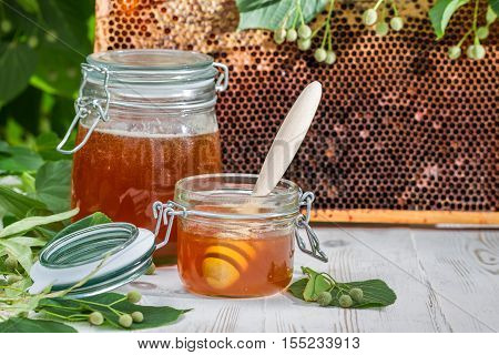 Honey In A Jar And Honeycomb With Linden Tree