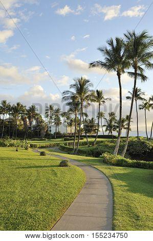 Public sidewalk of Wailea across the palm trees and resorts, Maui, Hawaii