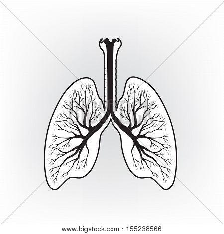 Lungs sign. Human internal organ anatomy icon