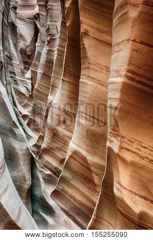 Zebra Canyon is a vivid striped and very narrow gorge. The awesome zig-zag shapes were created by water. Grand Staircase-Escalante National Monument, Utah. USA