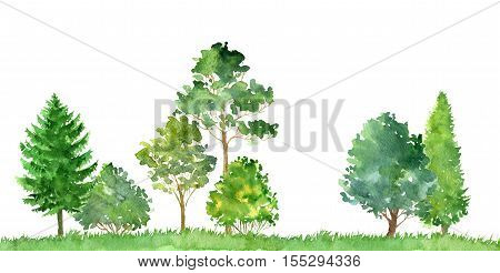 watercolor landscape with deciduous trees, pine and firs, bushes and grass, abstract nature background, forest template, green foliage and plants, hand drawn illustration