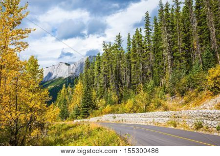The asphalt road runs between mountains. Cloudy autumn day in the Canadian Rockies
