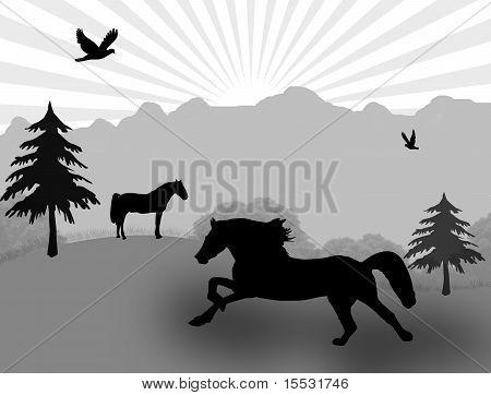 Wild Horse On Landscape