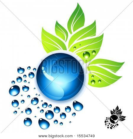 Water drops and green leaves vector illustration.