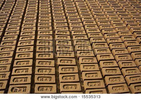 Clay brics